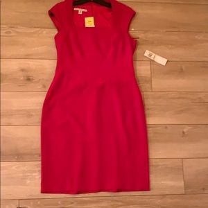 NWT MAGGIE LONDON DRESS
